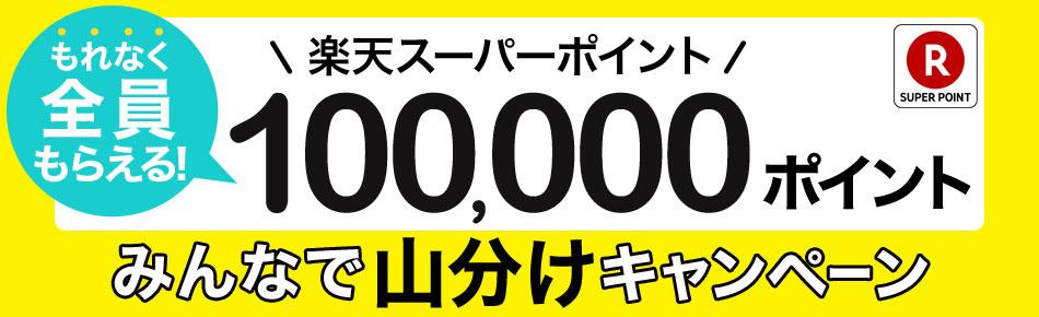 楽天で10万ポイント山分けキャンペーン。どうせ数ポイントしか当たらねーよ。