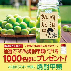 日本蒸留酒酒造組合で35%焼酎甲類が抽選で1000名に当たる。広口瓶入りで梅酒作りが捗るな。~6/12。