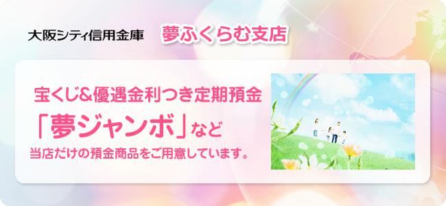 高金利0.35%の大阪シティ信用金庫の夢ふくらむ支店はインターネット取引不可。プッシュ回線取引必須。