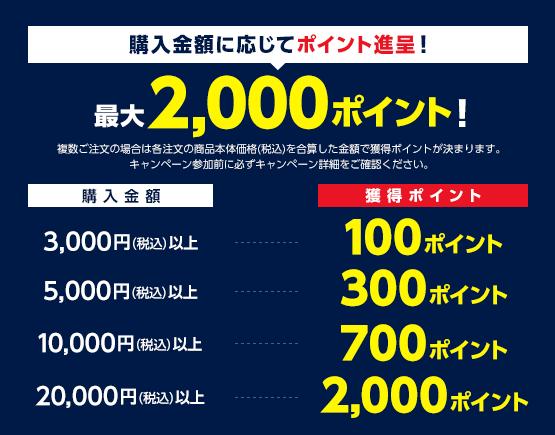 Yahoo!ショッピングで購入金額に応じて100-2000ポイント付与。2万円購入で2割還元。