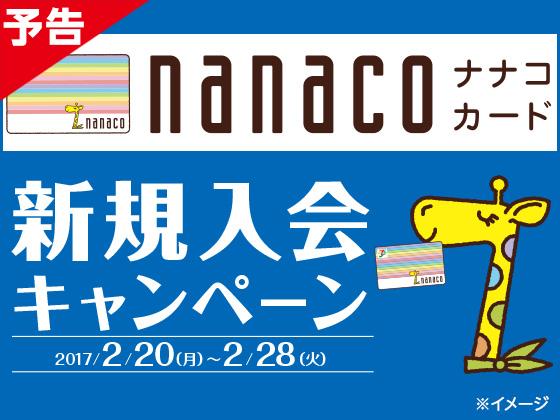 nanacoカードの入会で最大300ポイント貰えて発行手数料が実質無料。