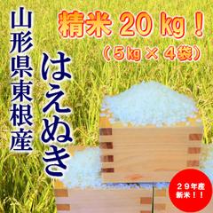 楽天ふるさと納税で山形県東根市に1万円寄付すると、精米のはえぬき 20kgがもれなく貰える。5kg2000円で高還元率80%。