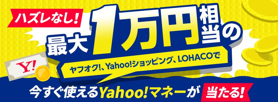 ヤフオクで使えるYahoo!マネー5円分がもれなく貰える。最大1万円分が抽選で当たる。口座登録が必要。~8/22。