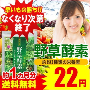 Yahoo!ショッピングで野草酵素1ヶ月分が20円送料無料。