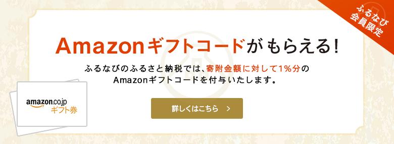 ふるさと納税サイト「ふるなび」からAmazonギフト券が発行可能のお知らせが着た。