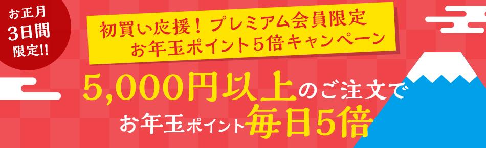 Yahoo!ショッピングで5000円以上でポイント5倍のお年玉キャンペーン。1/1~1/3。