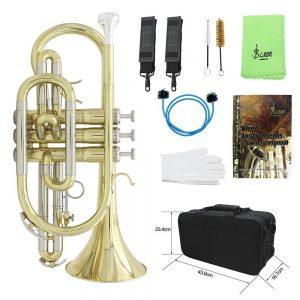 アマゾンでammoonの電気バイオリン、ピアノアコーディオン、ドラム、コルネット管楽器の割引クーポンを配信中。