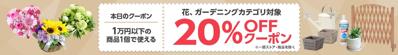 Yahoo!ショッピングで1万円以下で使える花、ガーデニングカテゴリ20%OFFクーポンを配布中。本日限定。