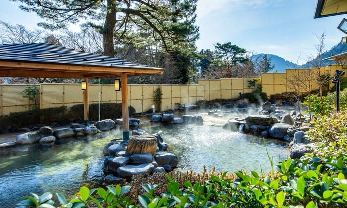 グルーポンで箱根小涌園 森の湯が2050円⇒700円となる割引クーポンを販売中。デイリープラスより安い。