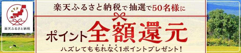 楽天ふるさと納税で1万円以上寄付すると抽選で50名に全額バック。~12/31。