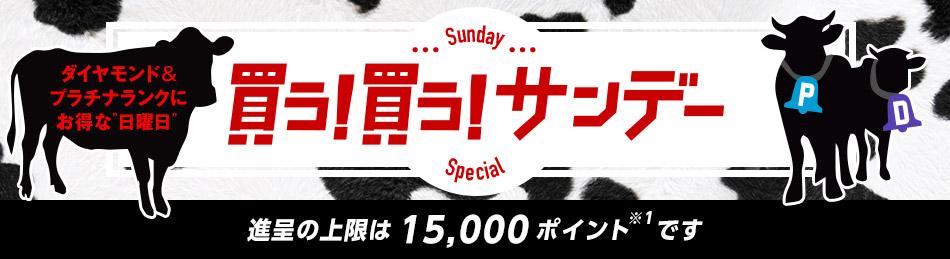 Yahoo!ショッピングで買う!買う!サンデーキャンペーンで3万円以上でポイント8倍。