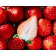 ららぽーと豊洲でとちおとめ、いちごさん、紅ほっぺ、あまおうなどのイチゴのサンプリングイベントを開催予定。2日間で合計2000名に配布。3/9~3/10。