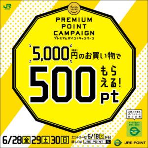 駅ナカで買い物をすると5500円以上で500ポイントがもれなく貰える。毎月月末金曜日付近限定。