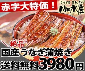 Yahoo!ショッピングで1万円以下で使えるすいか&メロン数十%OFFクーポンを配布中。本日限定。