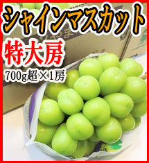 Yahoo!ショッピングで1万円以下で使えるぶどう、すいか&メロン数十%OFFクーポンを配布中。本日限定。