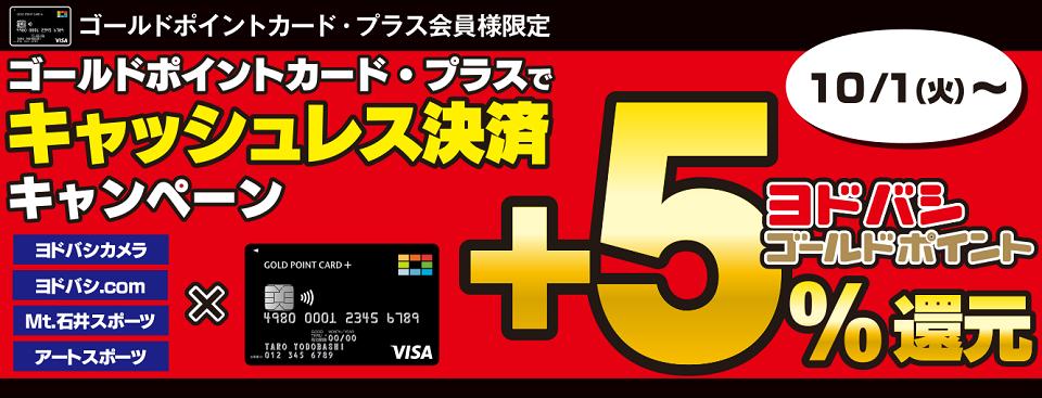 ヨドバシゴールドポイントカードで石井スポーツ含めて+5%還元。2万円分の還元まで。
