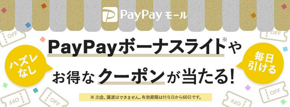 PayPayボーナスライトがごく少数に、しょーもないクーポンが大量に当たる。~1/15。