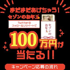 セゾンカードで500円ごとに抽選で1万人に現金1万円が当たる。
