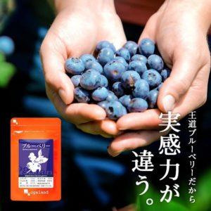 Yahoo/楽天のシードコムスでブルーベリーサプリメントが111円。今更眼にいいと思っている人は居ないよな。