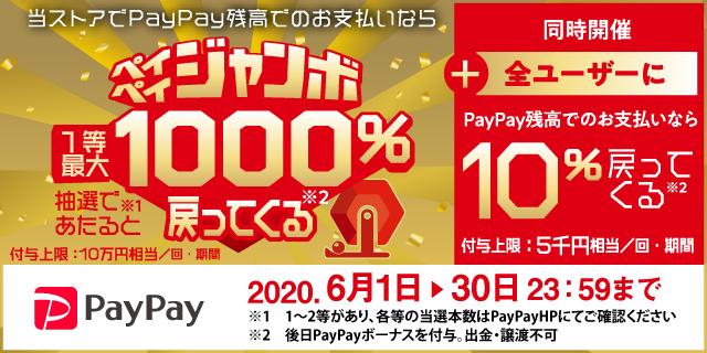 ヤマダウェブコムでPayPay支払いで還元率10%。~6/30。