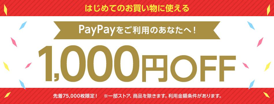 Yahoo!IDとPayPayアカウントを連携後、1年ぶりに買い物をすると2100円以上1000円OFF。~8/23 23時。