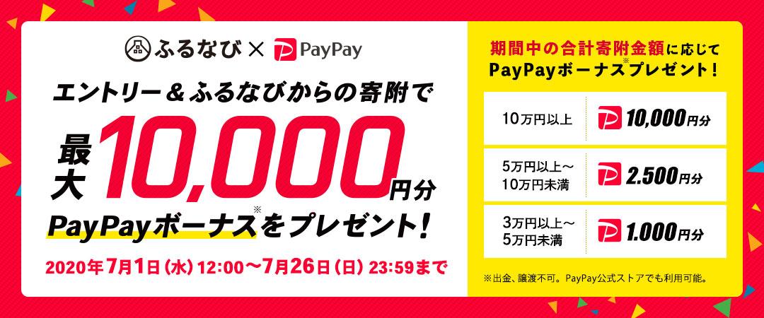 ふるなびでふるさと納税すると、最大10万円寄付で1万PayPayが貰えて還元率10%。肉、酒、魚の返礼品は別に貰える。納税乞食が捗るな。~7/31。