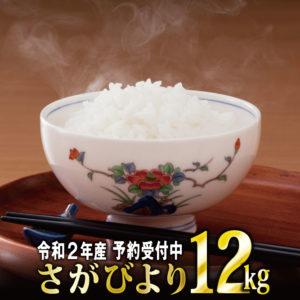 楽天ふるさと納税でお米のさがびより12kgが1万円寄付で貰えるぞ。驚異の還元率57%。