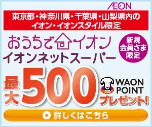 イオンネットスーパーで初回購入で200ポイント、6000円以上買うと+300ポイント、合計500ポイントが貰える。~11/30。
