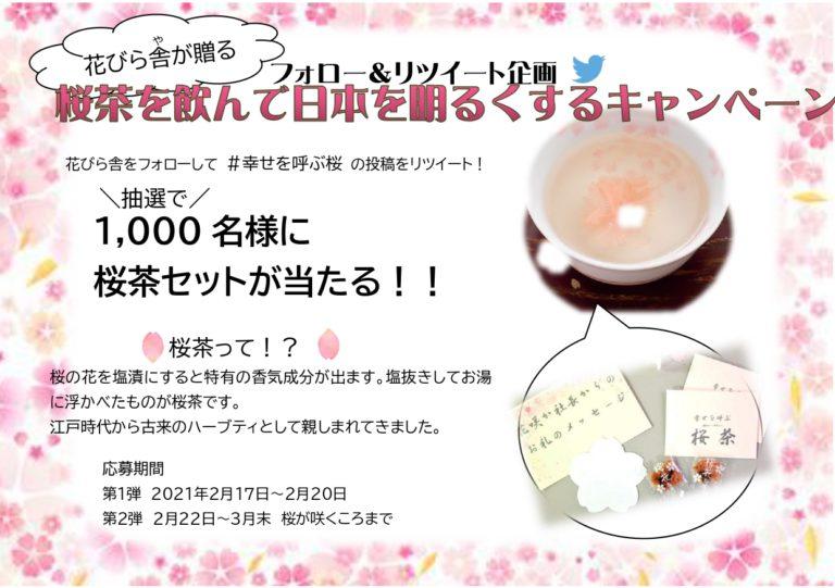 花びら舎で抽選で1000名に桜茶が1000名に当たる。~2/20。