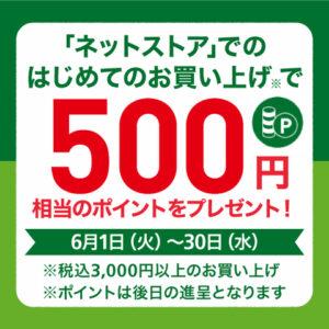 東急ハンズのネットストアで初めて3000円以上買うと500ポイントが貰える。言うほどネットストアで買うか?普通アマゾン・楽天・ヤフショ・ヨドだよな。~6/30。